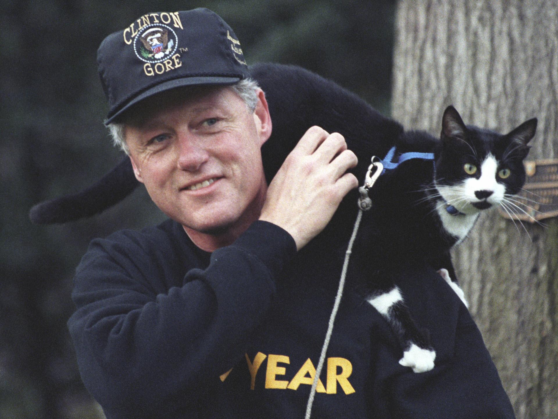 La historia detrás del Día Internacional del Gato | blackiecat.com